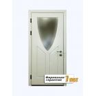 Остекленная металлическая дверь с отделкой окрашенным МДФ